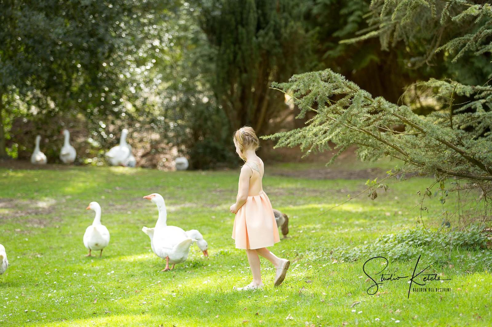 Communieportret van een meisje in een roze kleedje, wandelend tussen witte ganzen. Portret door Studio Ketels